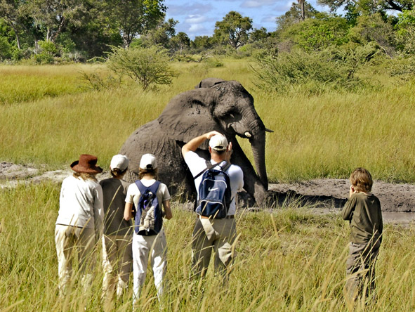 Stanleys Camp - Walking safaris