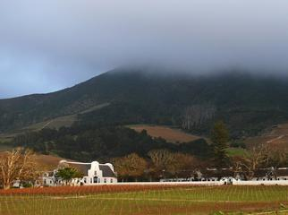 Rainy Days in Cape Town - Groot Constantia
