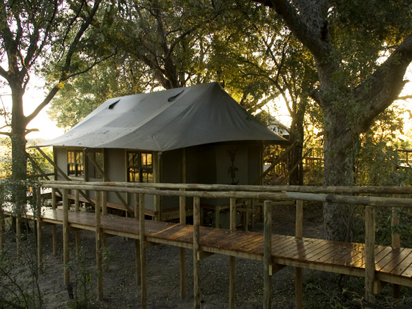 Chitabe Camp - Elevated suites