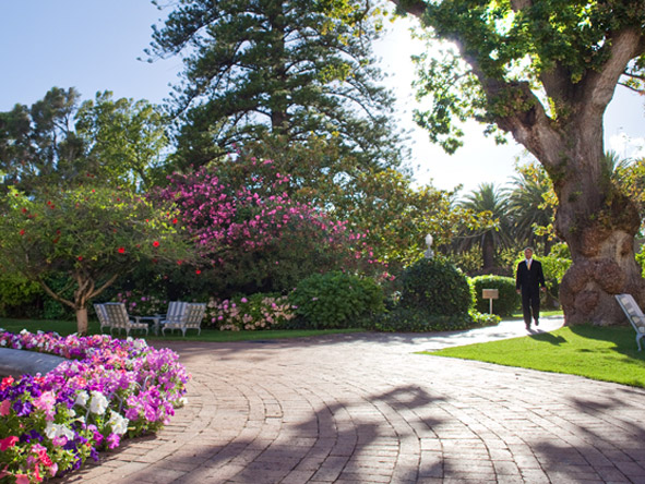 Mount Nelson - Manicured gardens