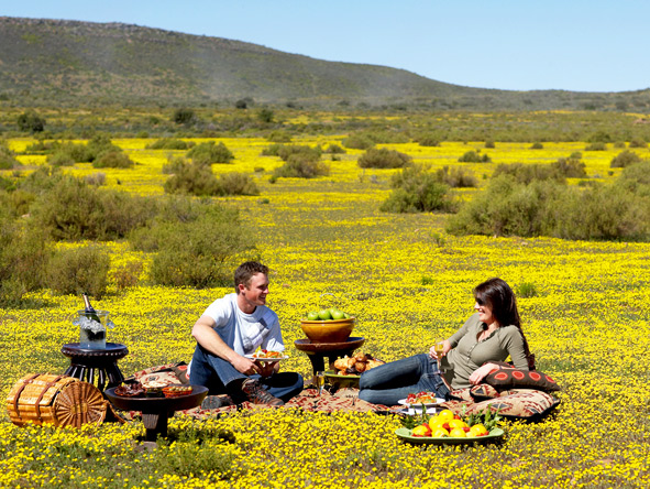 Exclusive Cape Romantic Journey - Romantic picnic lunches