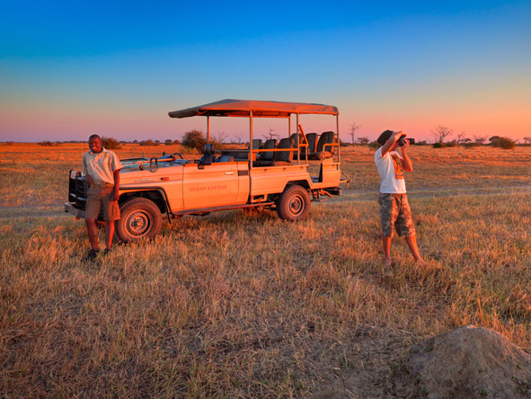 Savute Elephant Camp - Afternoon game drives