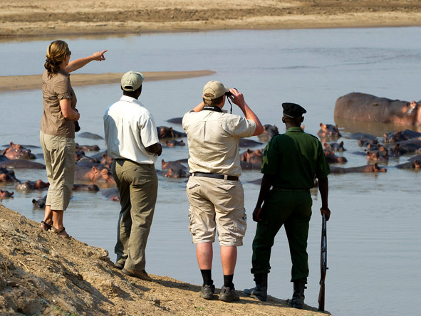 Lion Camp - Guided walking safaris
