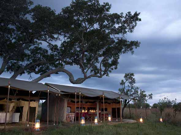 Serengeti Safari Experience - Latern-lit tented camp
