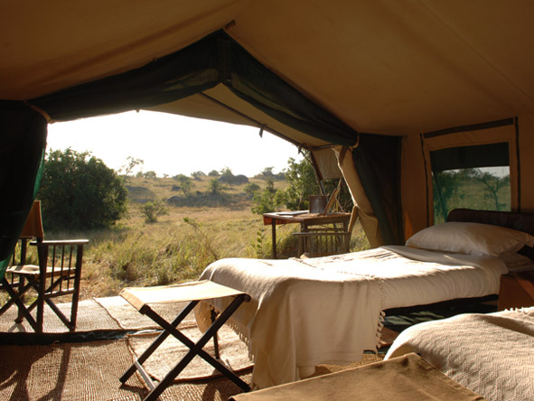 Serengeti Safari Experience - Stunning views