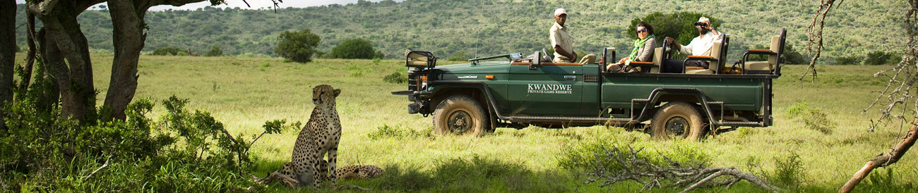 Iconic South Africa: Cape & Garden Route Safari