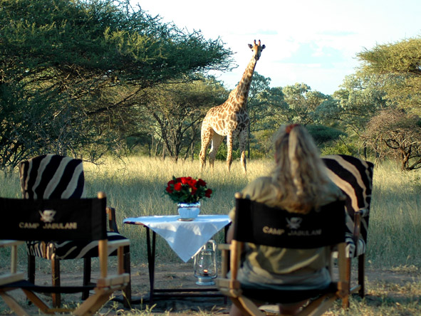 South Africa's Spectacular Nature Experience - Armchair game viewing