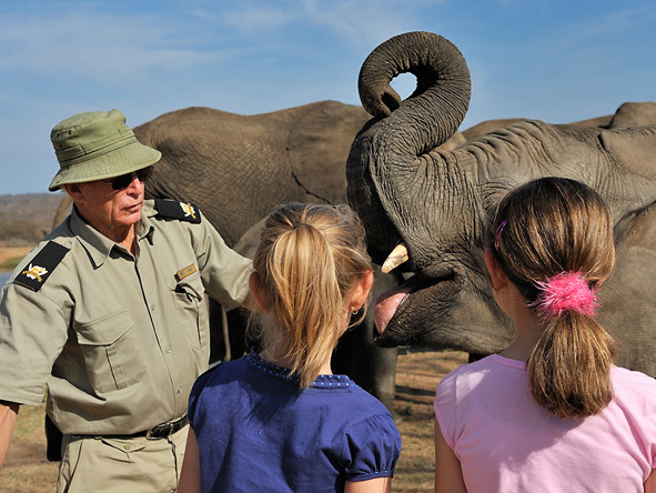 South Africa's Spectacular Nature Experience - Elephant interaction