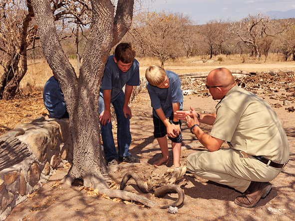 South Africa's Spectacular Nature Experience - Family-friendly activities