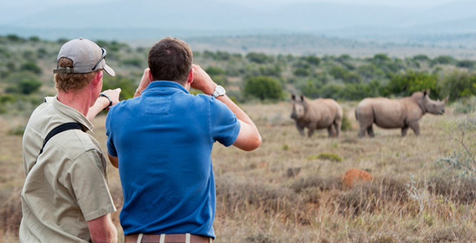 A Guide to Your First South African Safari - Walking safari