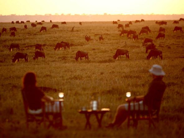 Adamson's Footsteps Kenya Explorer - Wildebeest migration
