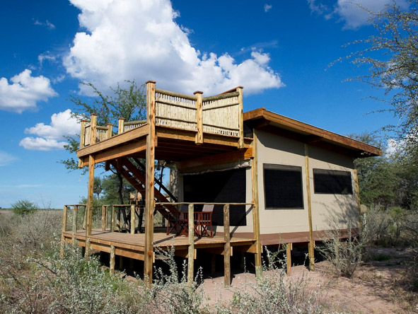 Kalahari Plains Camp - Raised viewing deck