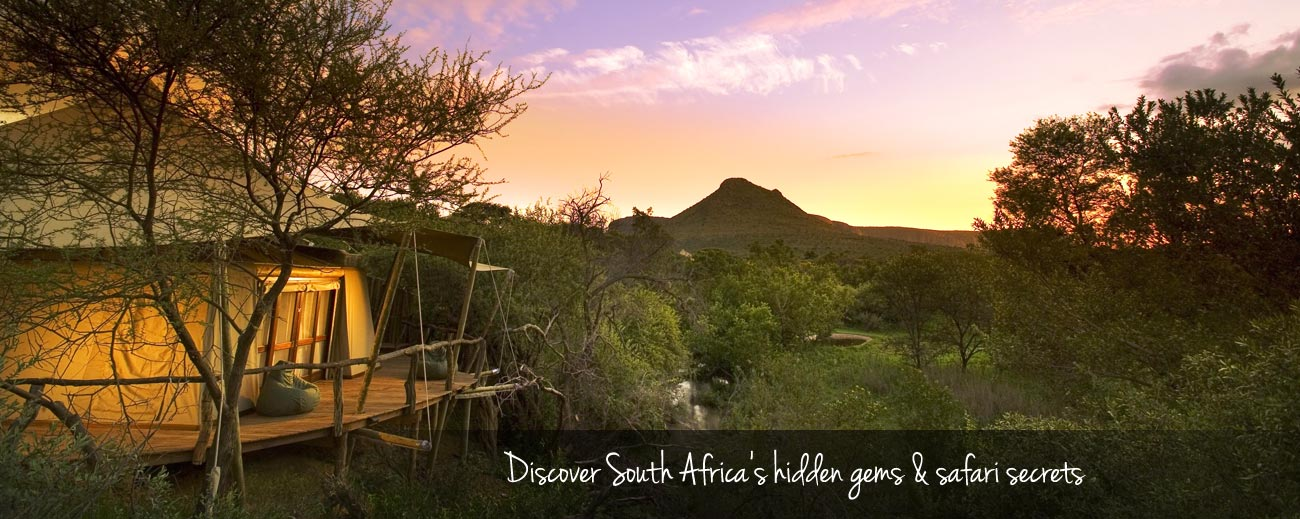 South Africa's Safari Secrets
