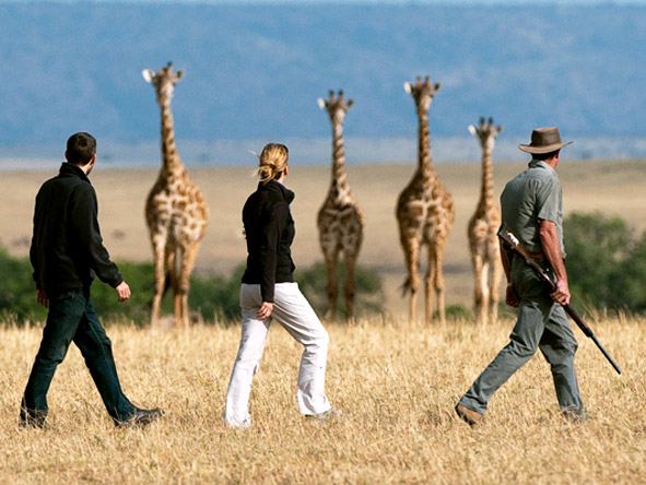 Mara Plains Camp - Walking safaris