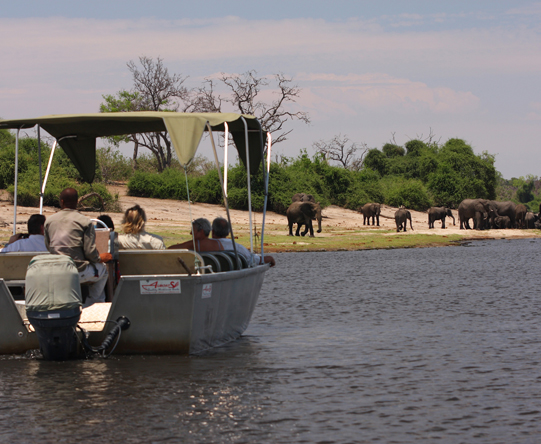 Small boats offer some of Chobe's best game viewing opportunities, especially in the dry winter season.
