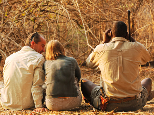 Mana Pools is ideal for a multi-activity safari: enjoy guided walks, game drives, canoe safaris & boat trips.