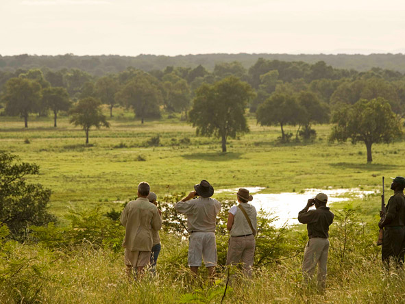 Game drives & boat safaris are on offer but it's guided walking safaris for which South Luangwa is best known.