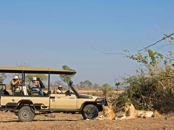 Well-watered & game-rich, the South Luangwa National Park is a predator's paradise.
