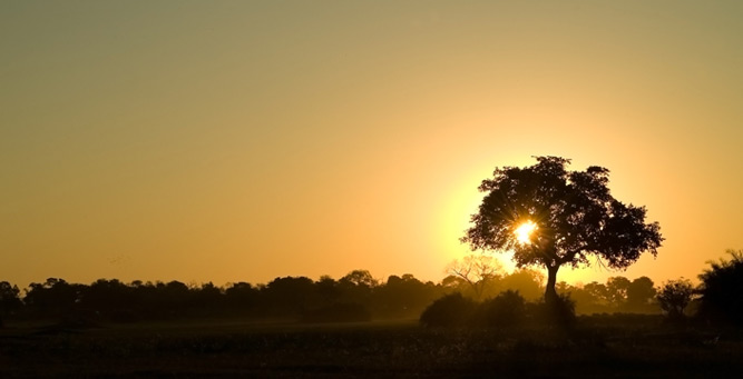 How to Shoot African Landscapes - backlighting