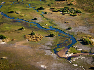 How to Shoot African Landscapes - Okavango Delta aerial shot