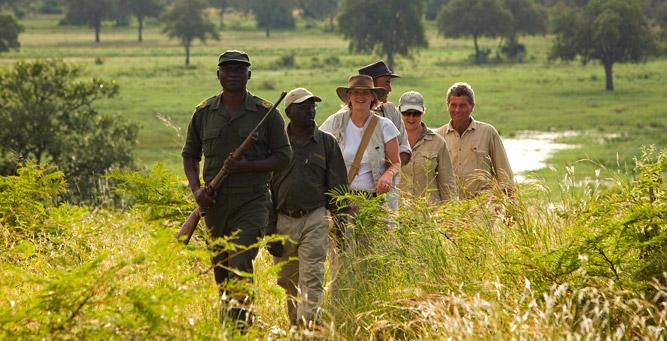 Things to Do in Zambia - walking safaris in South Luangwa