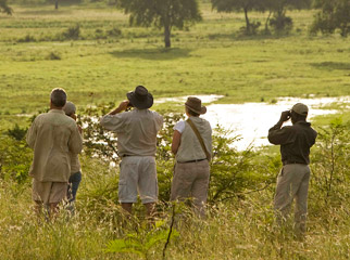 Things to Do in Zambia - spotting game in the distance