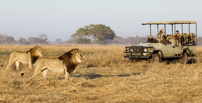 Things to Do in Zambia - the Busanga Plains in Kafue