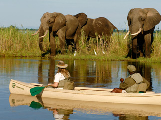 Things to do in Zamiba - canoe safari