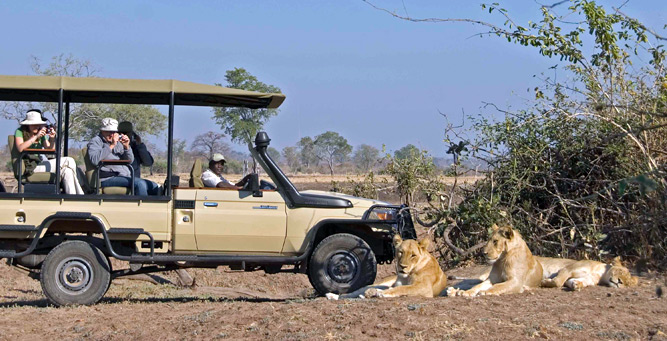 Things to do in Zambia - game drives in the South Luangwa