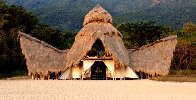 Tanzania's Western Wilderness - Greystoke Mahale