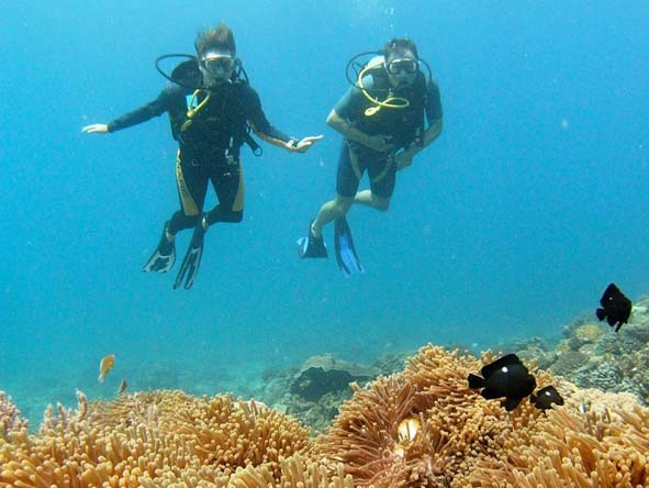 Several of our best dive spots are also our most romantic, making for wonderful honeymoons & getaways.