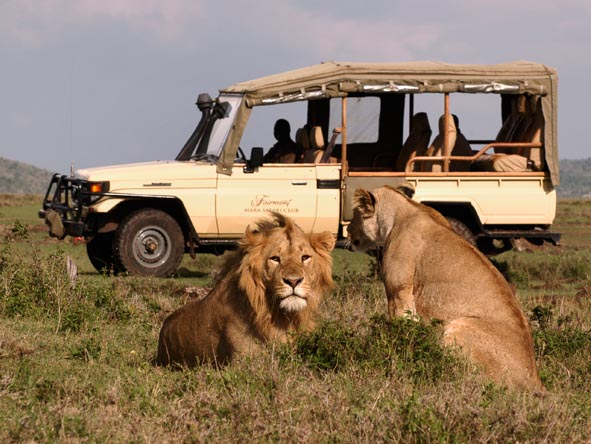 From the Kruger to the Serengeti, our affordable safaris take in Africa's prime game viewing destinations.