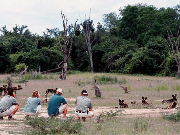 Walk the South Luangwa - Finest guides
