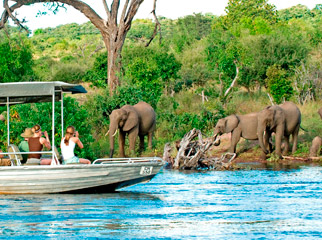 Top 5 Chobe Experiences - Chobe Chilwero