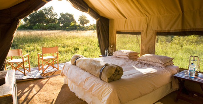 Top 5 Chobe Experiences - Chobe Under Canvas