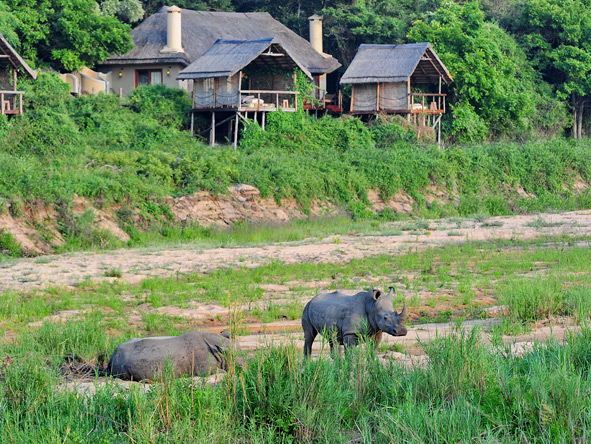Jock Safari Lodge - Lodge-based game viewing