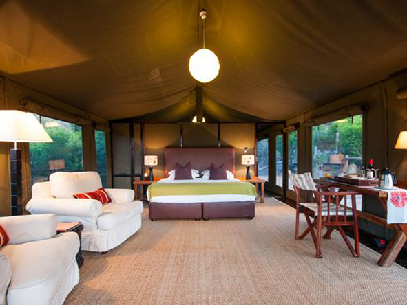 HillsNek Safaris - Spacious canvas tents