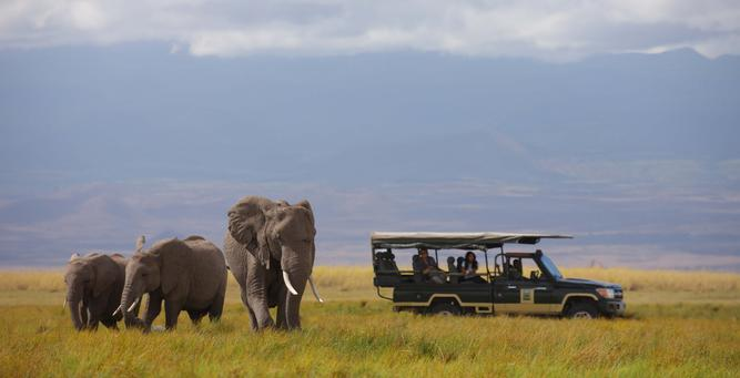 Is it Safe to Travel to Kenya? On safari in Amboseli