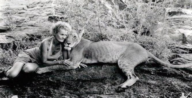 Canvas & Candlelight - Joy Adamson with Elsa the lion