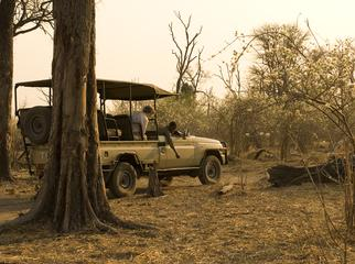 Going Private in Botswana - Linyanti Bush Camp