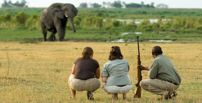 Going Private in Botswana - Walking Safaris