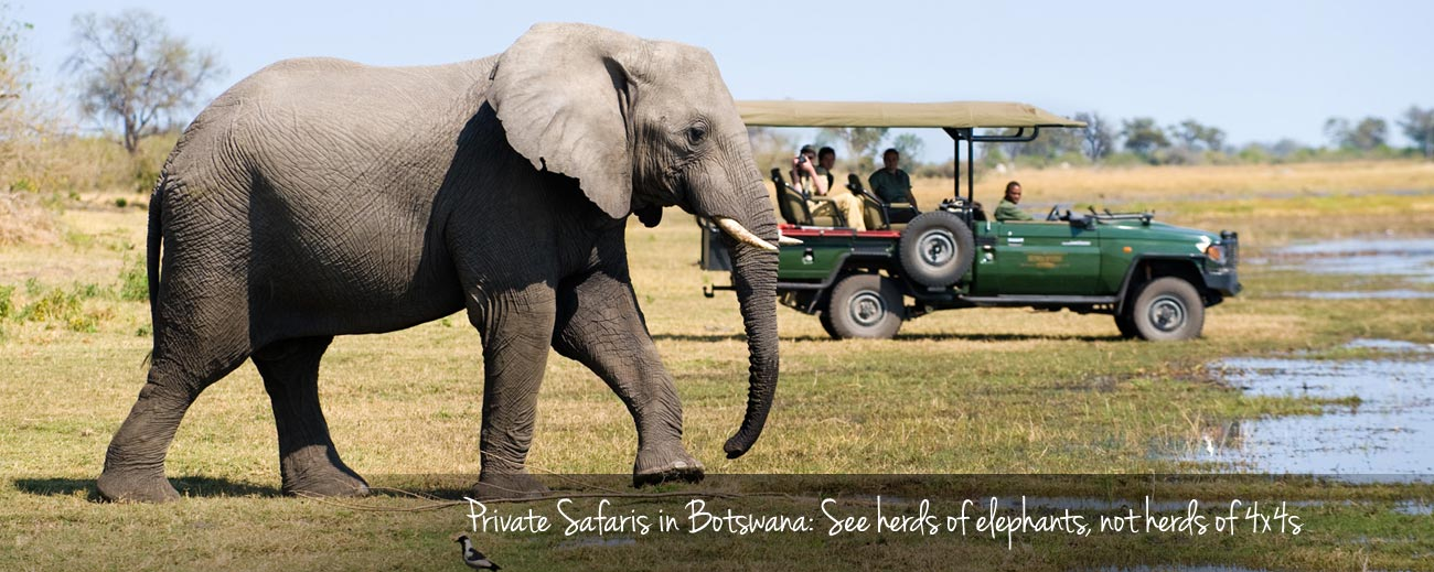 Going Private: Getting the Best out of Botswana