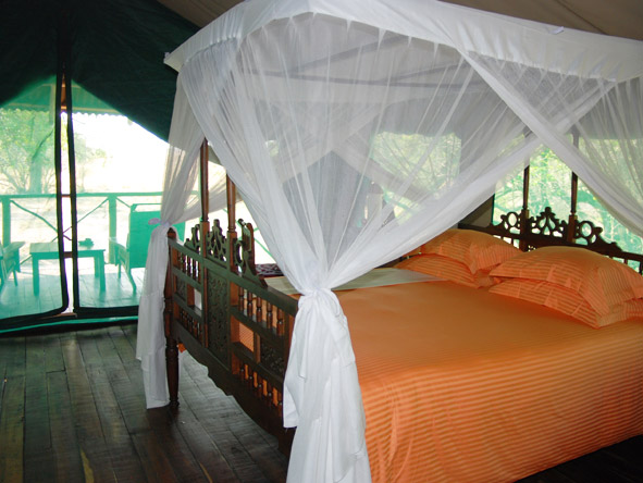 Katuma Bush Lodge - Spacious tents