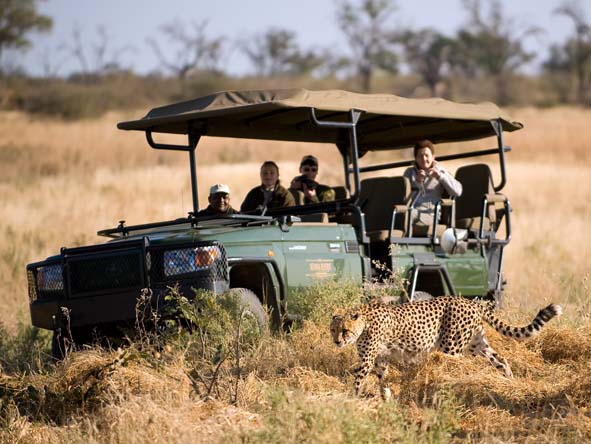 Botswana's legendary game viewing can easily be combined with a tropical beach holiday - ask us how.