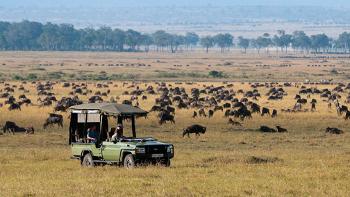 African Tours & Safaris - Migration Safaris