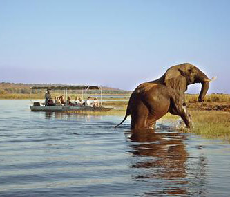 African Tours & Safaris - Affordable Safari Packages