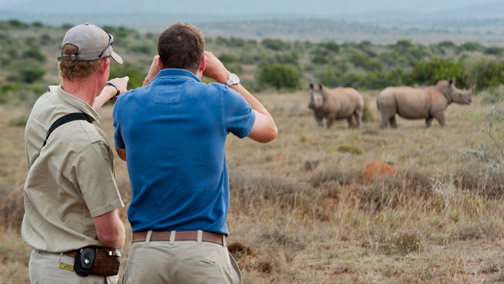 African Tours & Safaris - Malaria-Free Safaris