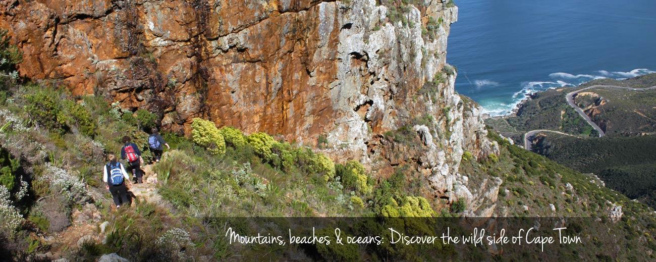 Cape Escape - Eco Adventures in Cape Town