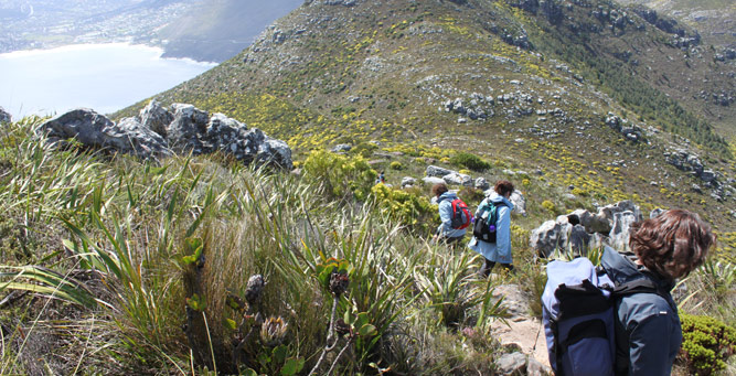 Cape Escape - Hiking the Hoerikwaggo Trail