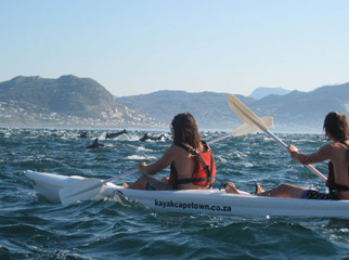 Cape Escape - Sea kayaking
